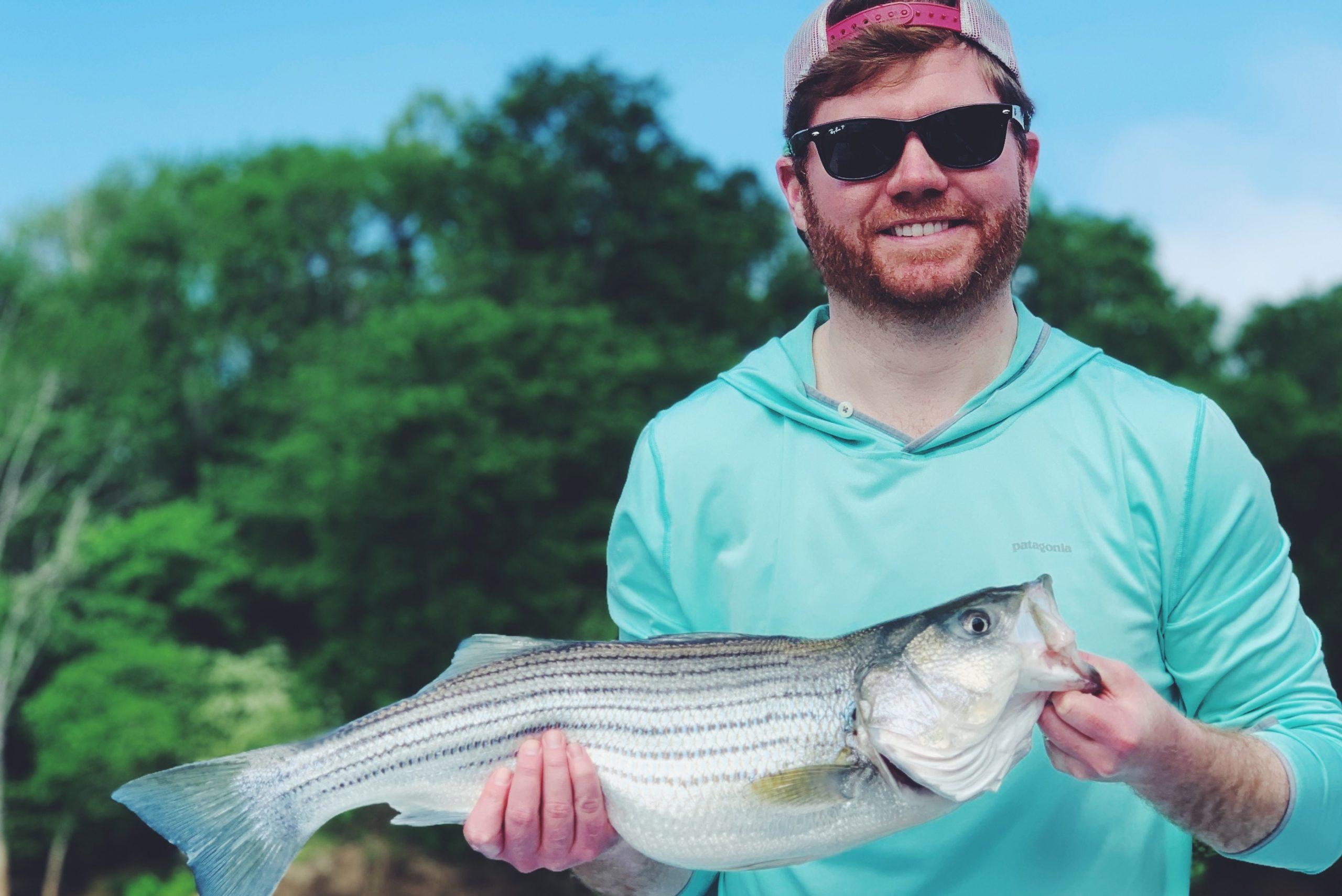 Weldon Striped Bass Sightfish NC